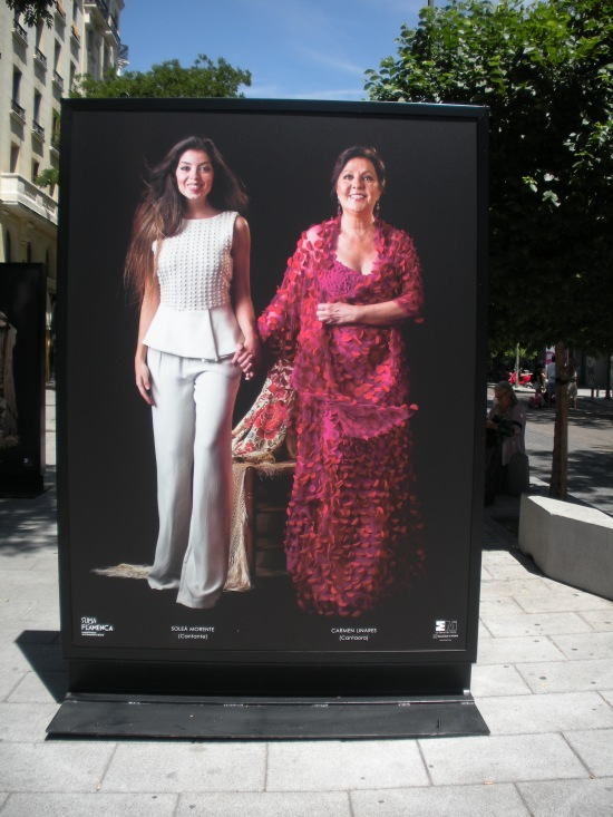 suma flamenca madrid 2013
